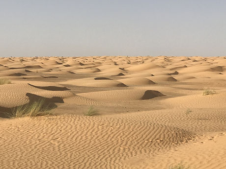 Le Sahara à Ksar Ghilane Tunisie