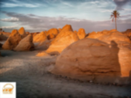 Dunes pétrifiées.JPG