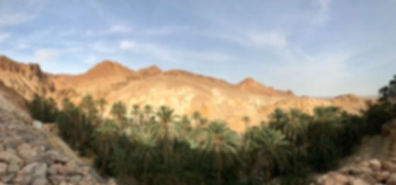 Excursion-Desert-Ksar Ghilane.jpg