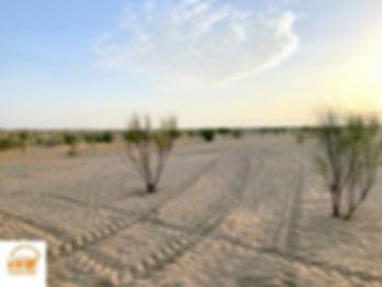 Excursion désert Tunisien en 4X4 avec FGrand Sahara Aventures.jpg