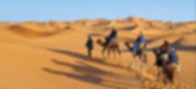 Balade en dromadaire à Ksar ghilane. Départ Djerba. jpg