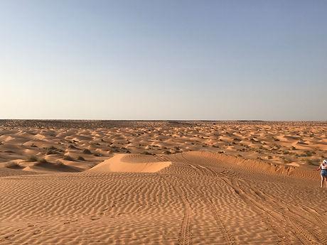 Le désert de Ksar Ghilane. Tunisie