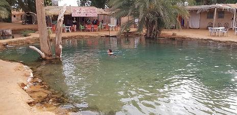 Djerba à Ksar Ghilane, baignade à la source. jpg