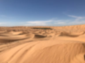 Circuit désert Tunisien.JPG