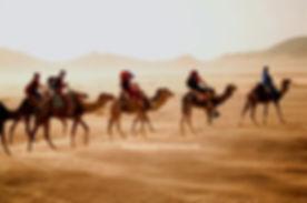 Tozeur, Méharée dans le désert à Douz. jpg