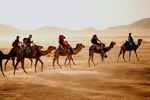 Bivouac dans le désert Tunisien