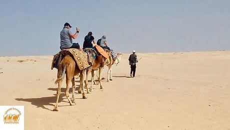 Balade à dromadaire de Tozeur à Douz dans le désert tunisien