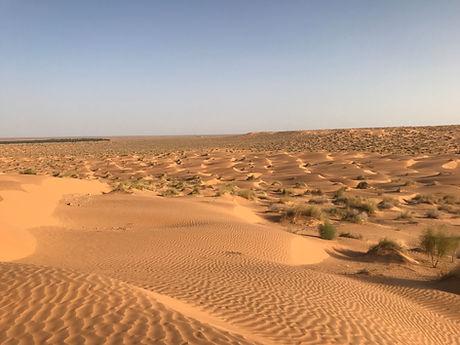 Nuit dans le désert Tunisien à Ksar Ghilane