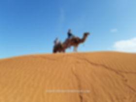 Excursion en dromadaire à Ksar ghilane de Djerba.jpg