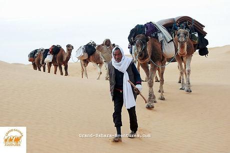 Méharée dans le désert tunisien de Gabes à Douz.