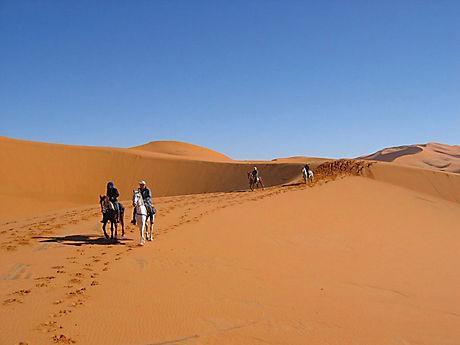 Randonnée à cheval dans le désert tunisien à Douz