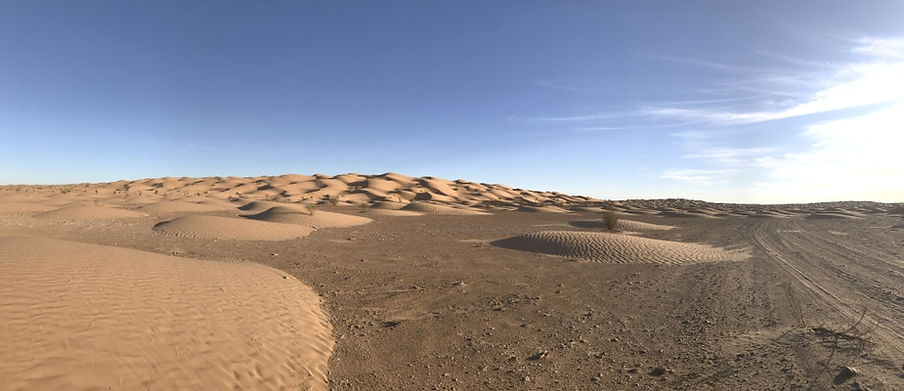 Randonnée Chameliere dans le désert Tunisien. Jpg