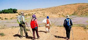 Trek dans le djebel Dahar et nuit dans le désert