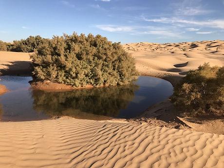 Ledésert et le lac Houidath Erreched, Tunisie