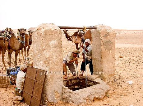 Randonnée Chameliere dans le désert à Douz, Tunisie.