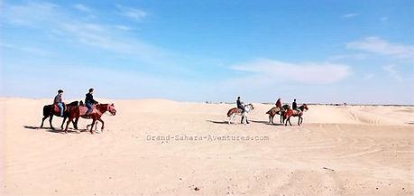 Excursion Balade à cheval de Zarzis à douz dans le désert tunisien.