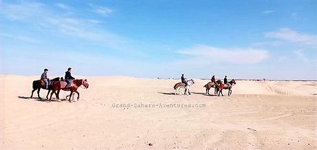 De Djerba. Balade à cheval dans le désert à Douz