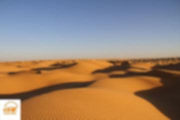 Dunes de sable du désert de Ksar Ghilane, avec Grand-Sahara-Aventures, Tunisie.jpg