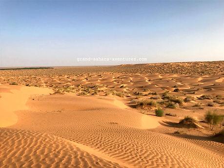 Le désert de Ksar Ghilane.