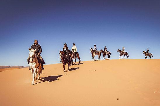 Excursion équestre dans le désert à Douz. Tunisie