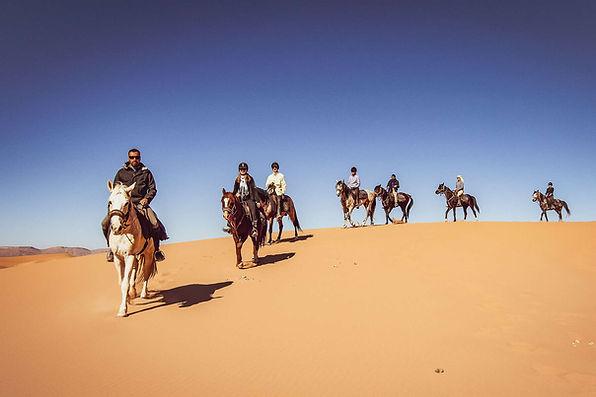 Djerba Balade à Cheval dans le désert Tunisien