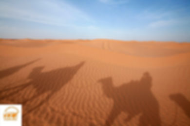 Grand trek en Dromadaire dans le desert Tunisien depuis Djerba et Douz, Tunisie, Grand-Sahara-Aventures.jpg