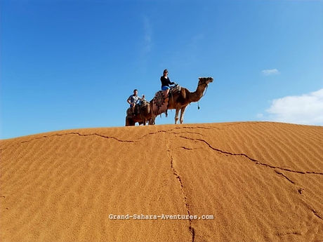 Excursion Djerba à Ksar Ghilane le désert en dromadaire