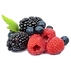 berries no background.png