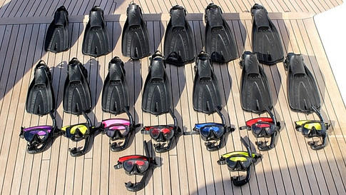 Snorkels, Masks, and Fins