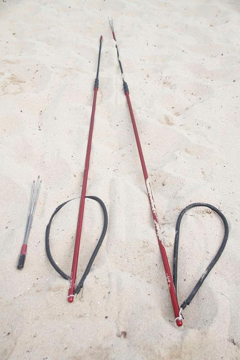 Polespears