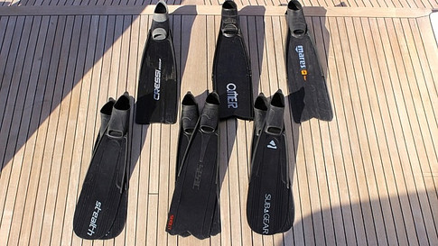 Free-diving Fins
