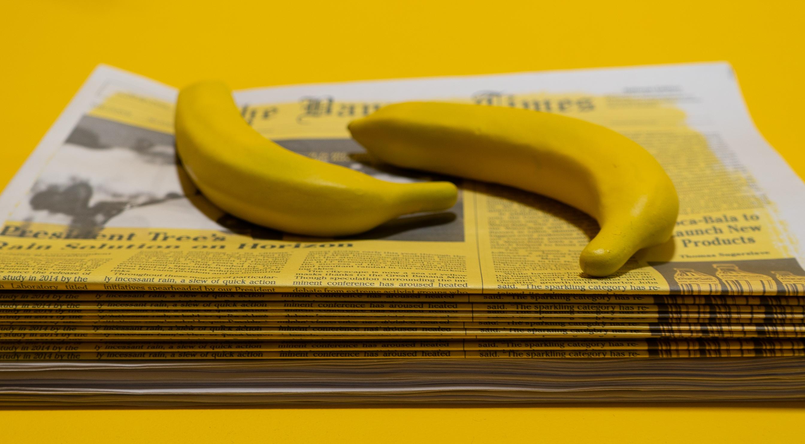 Banana Project 8