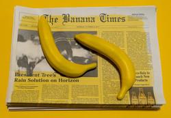 Banana Project 1