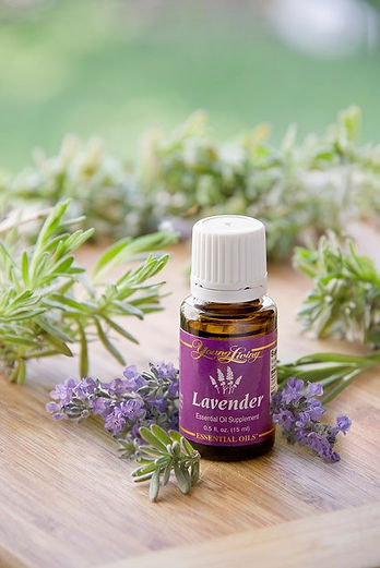 YoungLiving Lavender