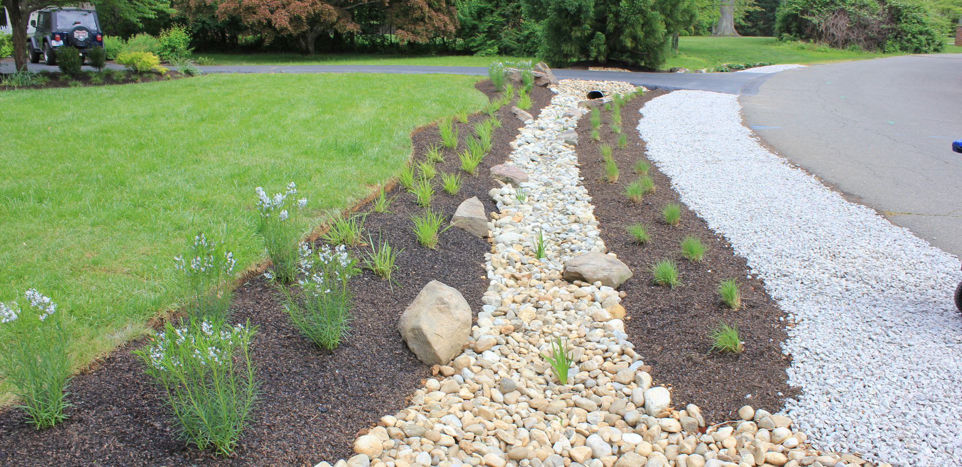 Dry stream with prairie planting