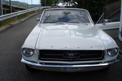 1. Seite Mustang 67  V 8