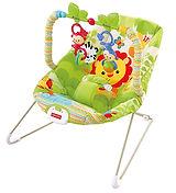 bouncy seat 2.jpg