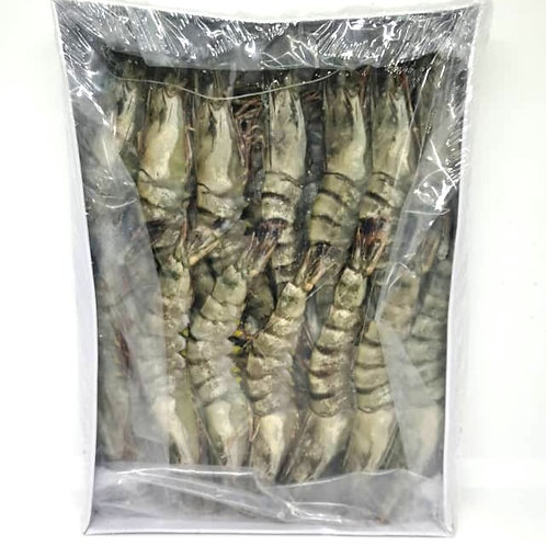 Tiger Prawn, Head On Shell On   |   Size: XL