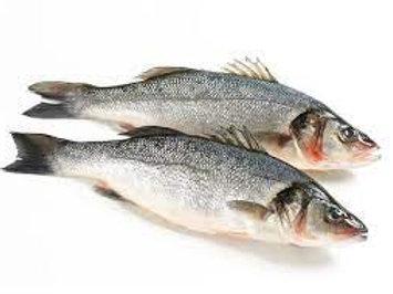 Sea Bass (Siakap), gutted (~1kg per piece)