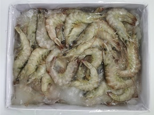 Vannamei Prawn, with head and shell on (size 21/25)
