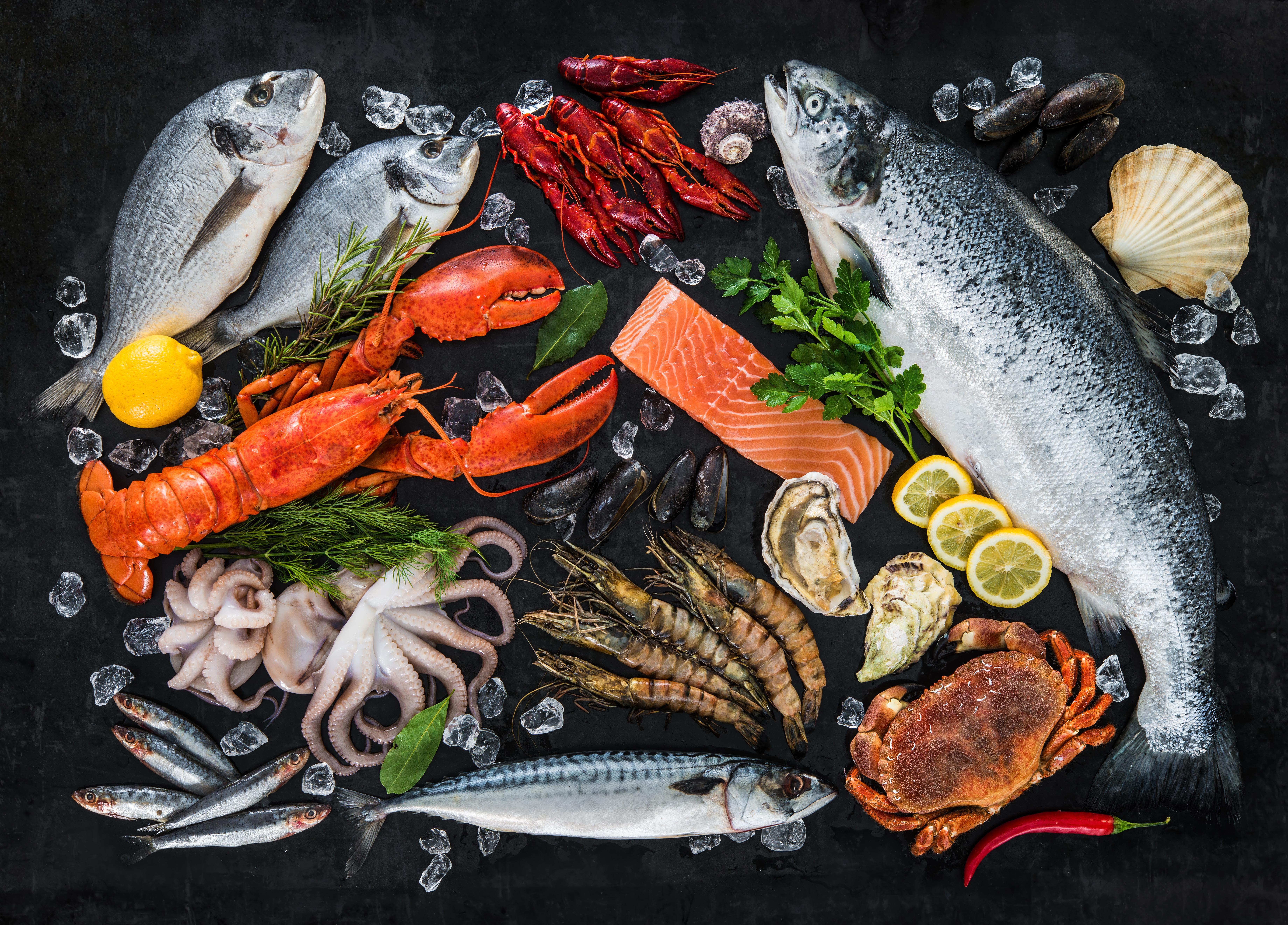 Frozen seafood delivery Selangor, Klang, Ipoh, Penang, Malaysia