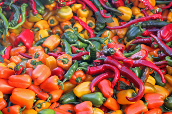 hot and sweet peppers.jpg
