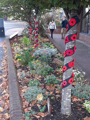 Luisa's crocheted poppies