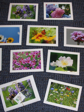 Banstead Village in Bloom cards