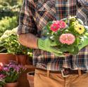 gardener-4186301.jpg
