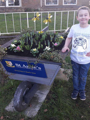 Spring has finally sprung in the St Anne's wheelbarrow!