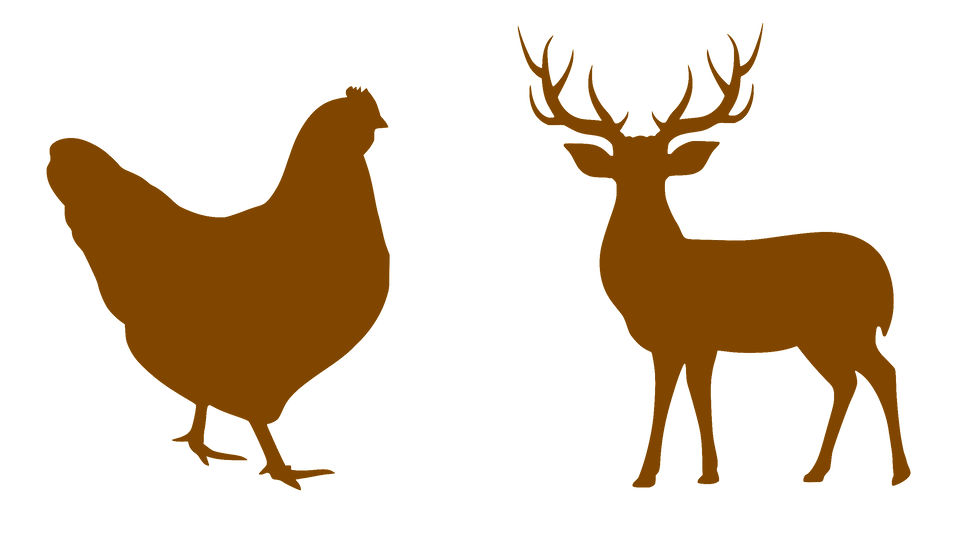 Hen & Stag_edited.png