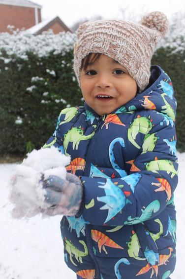 Hudson in Winter