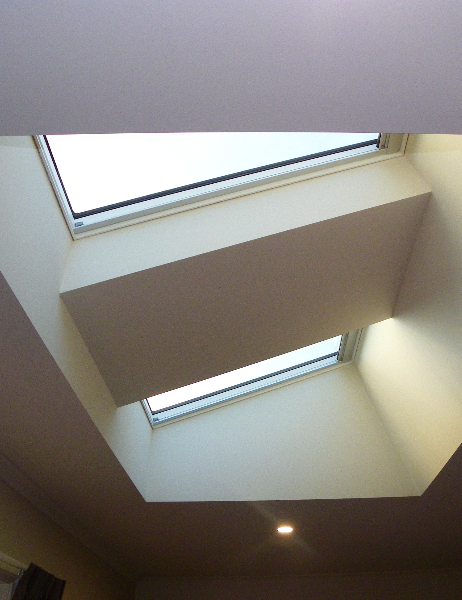Plaster Shaft Specialty Skylight