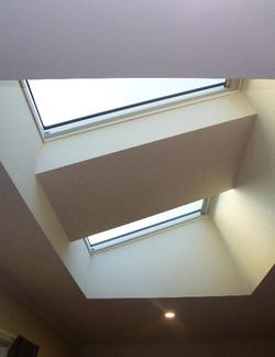 Plaster Shaft Specialty Skylight